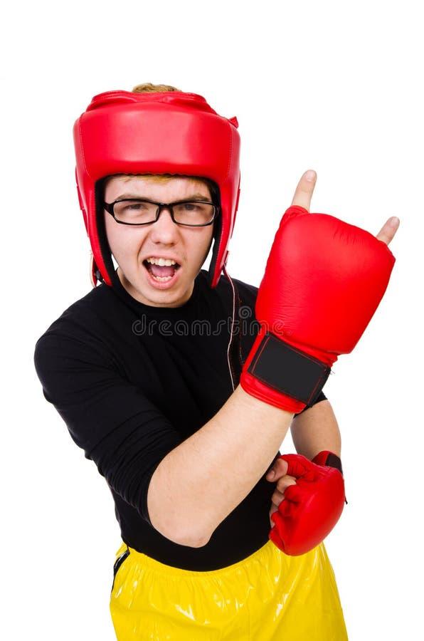 Grappige bokser stock foto's