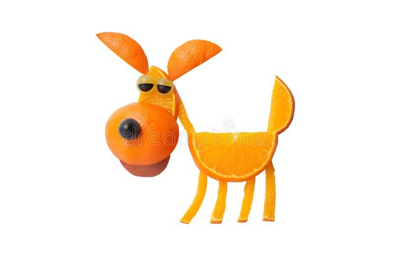 Grappige die hond van sinaasappel wordt gemaakt stock afbeelding