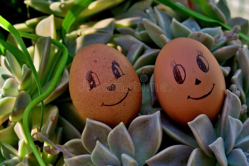 Grappige eieren met ogen en glimlachen op groen gras royalty-vrije stock afbeeldingen