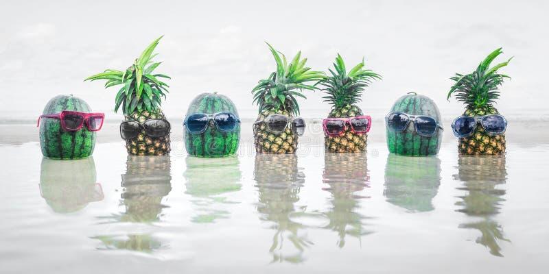 Grappige exotische tropische vruchten groep op de vakantiepartij van het de zomerstrand stock afbeeldingen