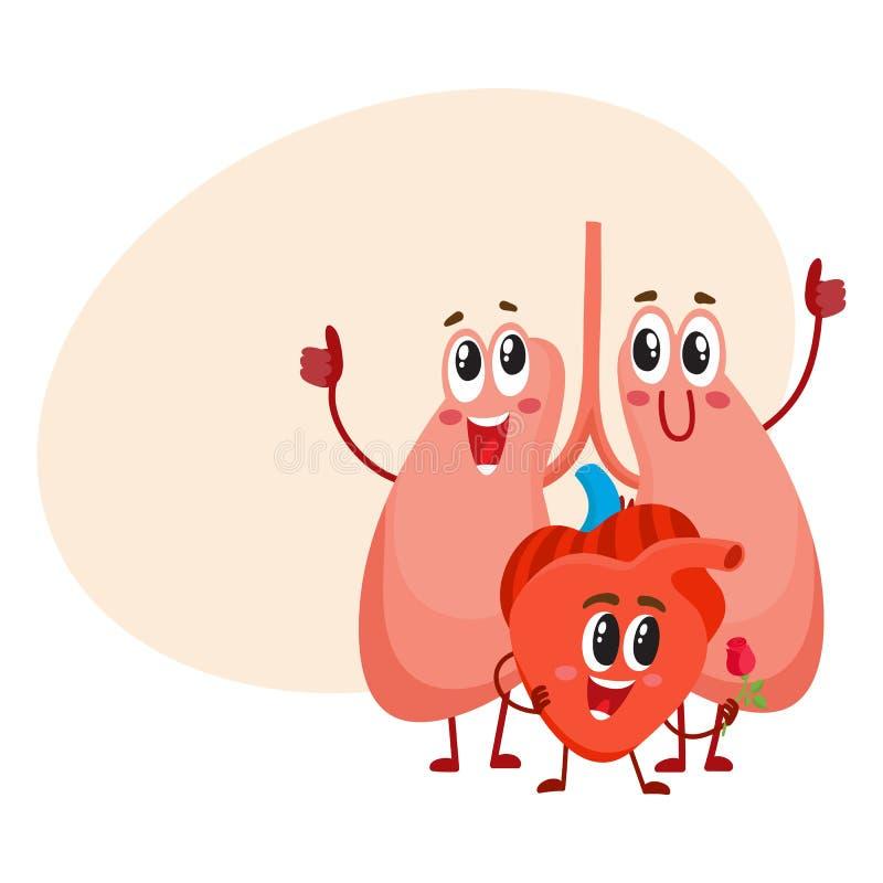 Grappige, het glimlachen menselijke longen en hartkarakters, borst interne organen stock illustratie