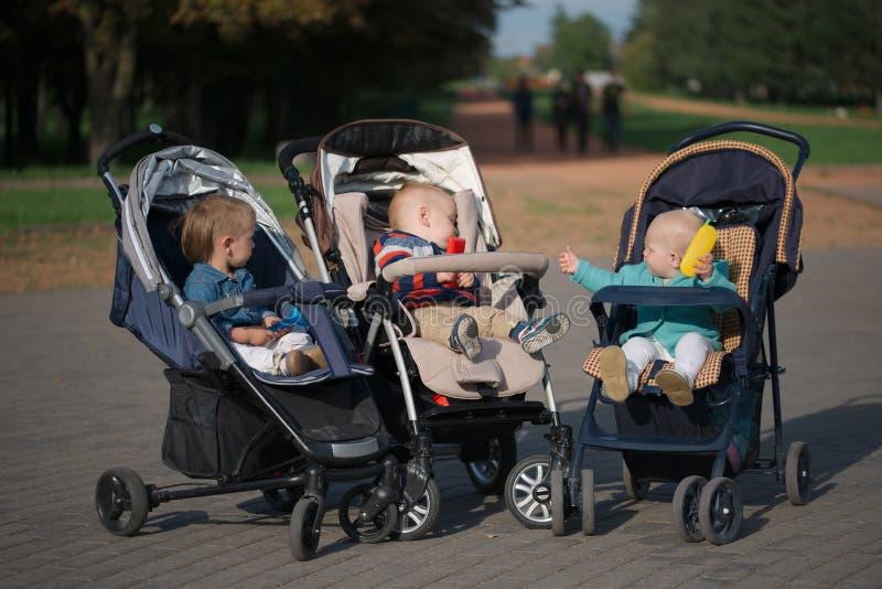 Grappige kinderen die in wandelwagens in park zitten royalty-vrije stock foto's
