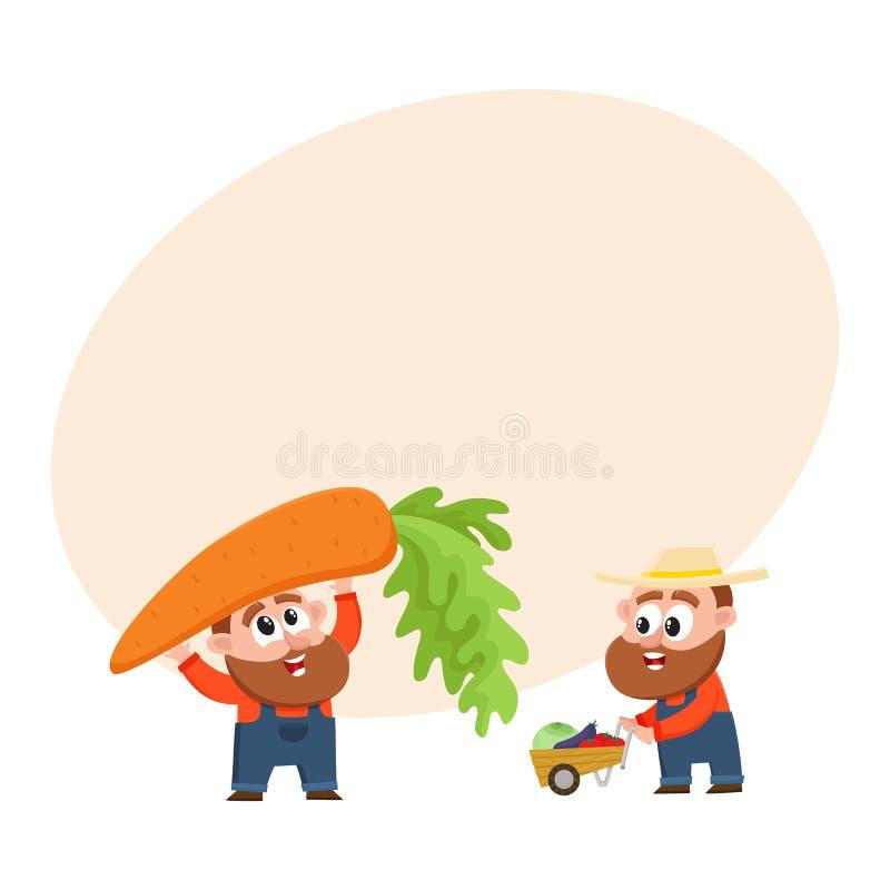 Grappige landbouwers die groenten oogsten, houdend reuzewortel, die stootkar, kruiwagen duwen stock illustratie