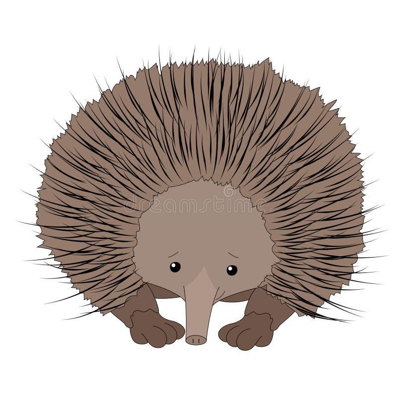 Grappige leuke echidna voor kinderen vector illustratie