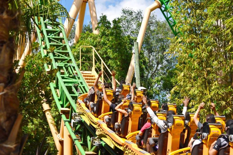 Grappige mensen in Jachtluipaard Hunt Rollercoaster, die het bos, manier tot de bovenkant bij Bush-Tuin kruisen royalty-vrije stock afbeeldingen