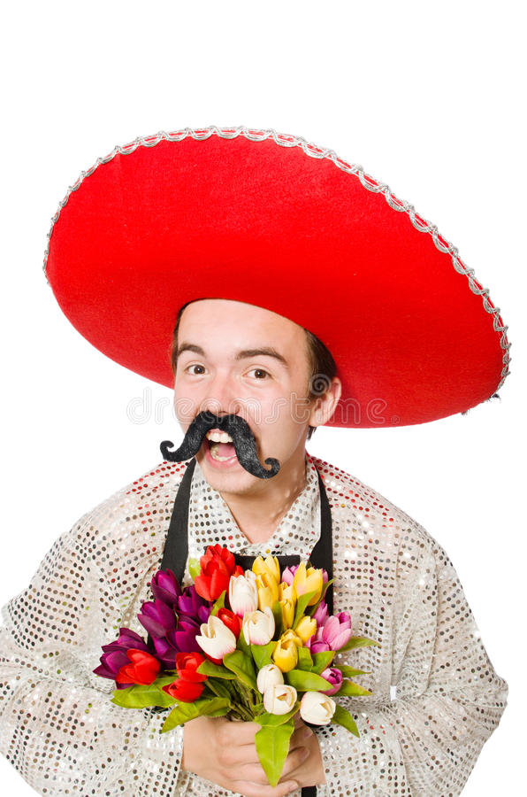 Grappige Mexicaan royalty-vrije stock foto's