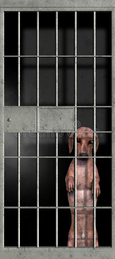 Grappige Slechte Ongehoorzame Hond, Gevangenis, Tekkel stock foto's