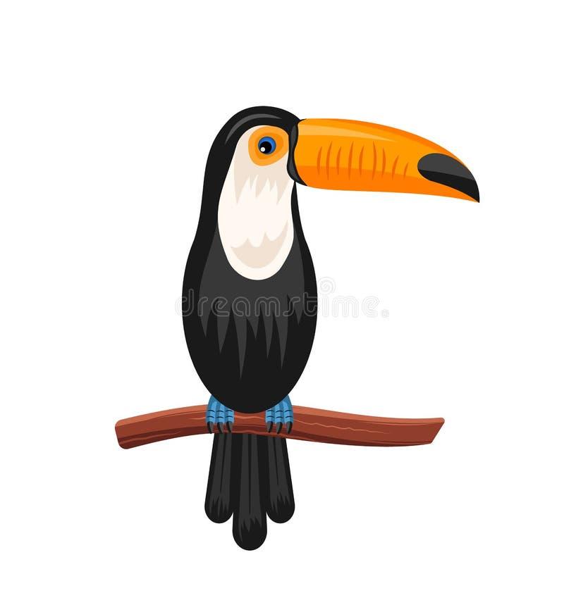 Grappige Toekanzitting op Tak, Exotische Vogel stock illustratie