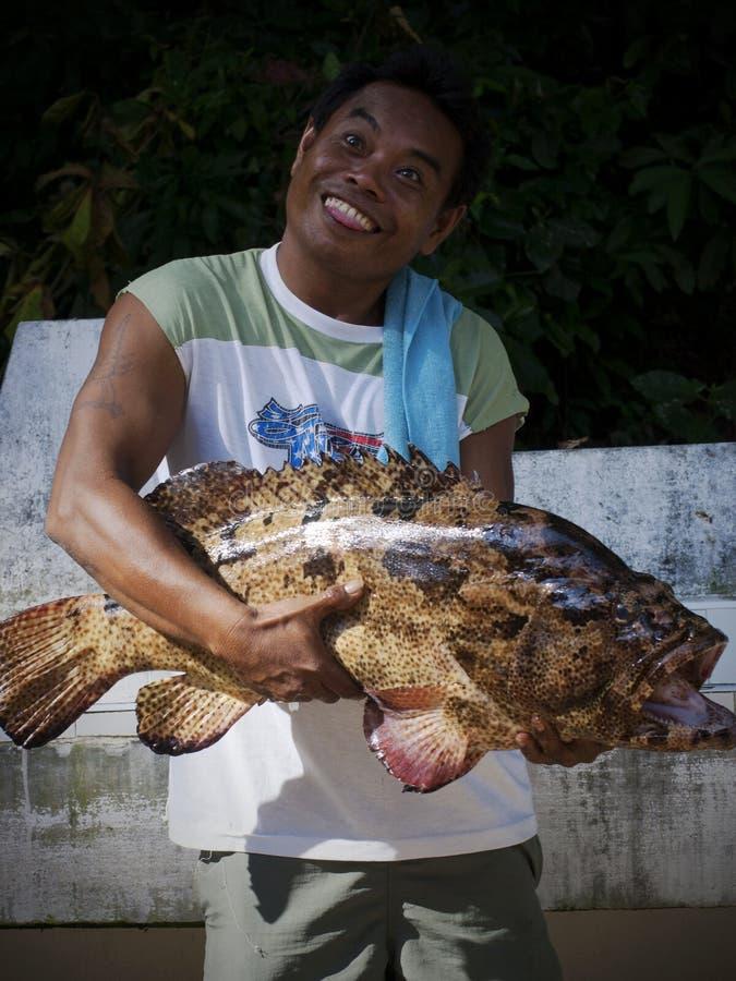 Grappige Vissen royalty-vrije stock afbeelding