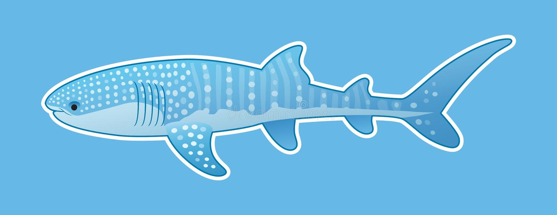 Grappige walvishaai stock fotografie