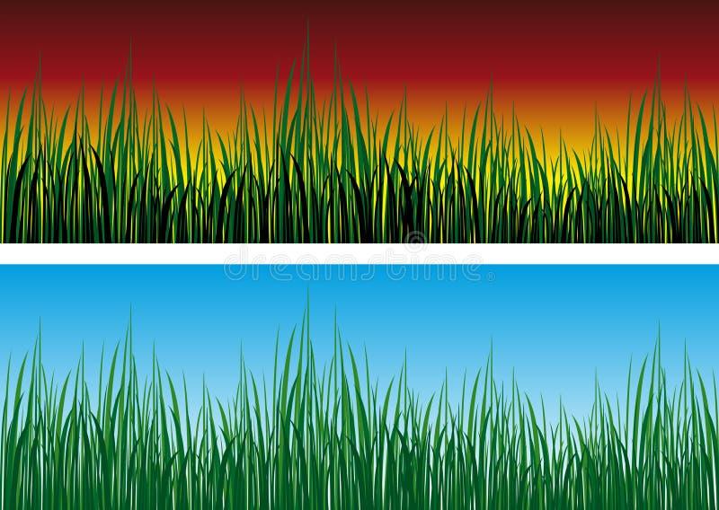 Gras stock abbildung