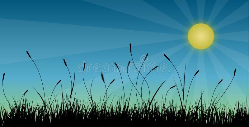 Gras vector illustratie