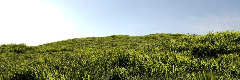 Gras aan de horizon stock afbeeldingen