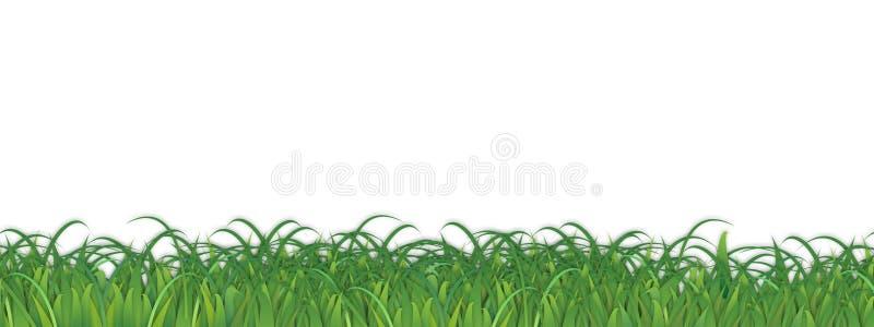 Gras Achtergrondonkruidvector vector illustratie