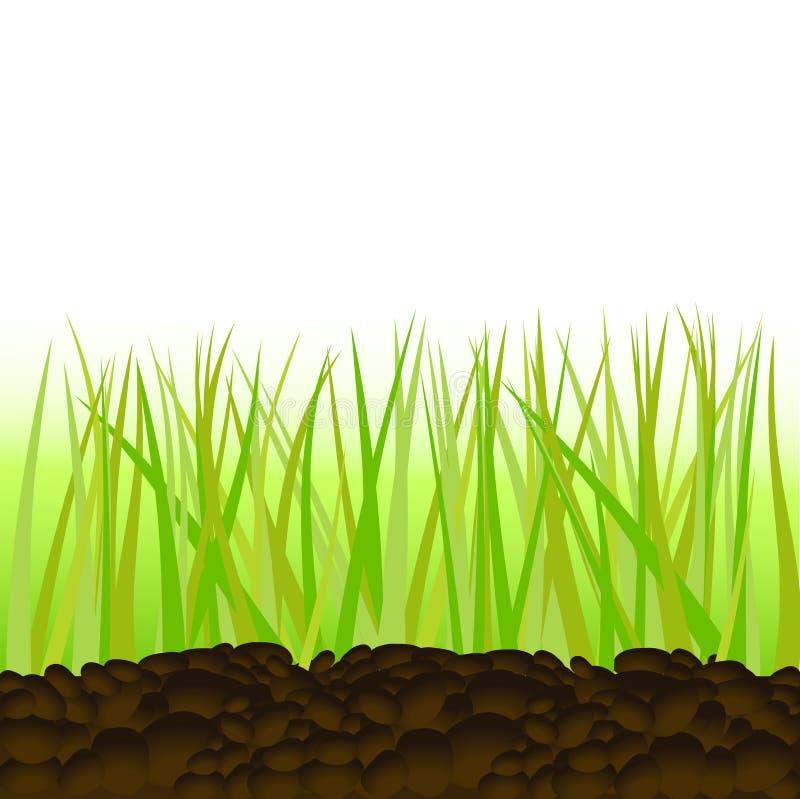 Gras afzonderlijk royalty-vrije illustratie