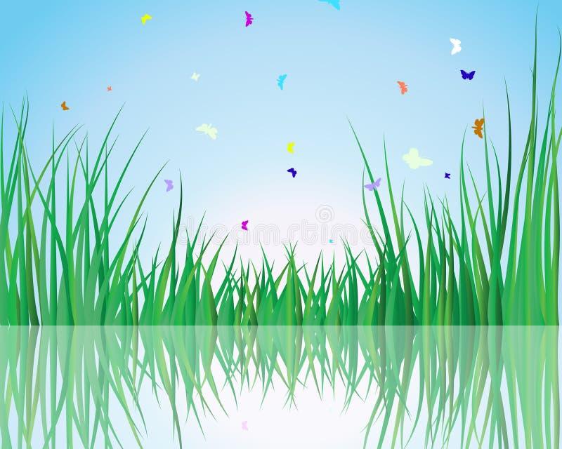 Gras auf Wasser vektor abbildung
