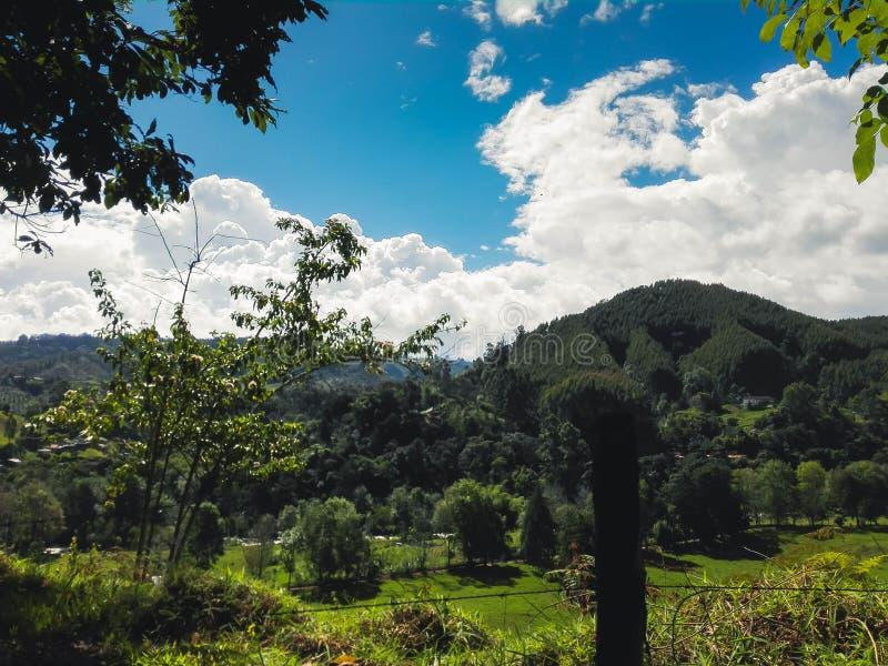 Gras, bomen en bergen van de hemel royalty-vrije stock foto
