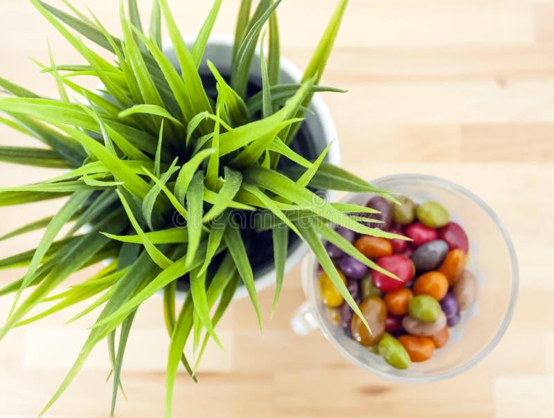 Gras in een ronde pot en een gekleurd suikergoed royalty-vrije stock afbeeldingen