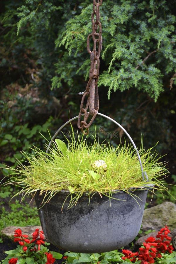 Gras in einem großen Kessel stockbild