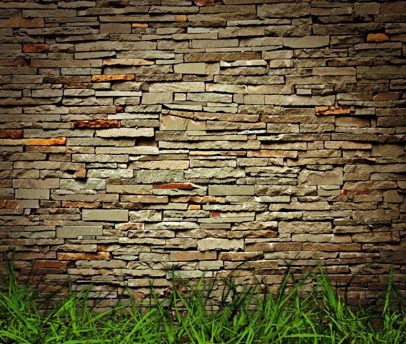 Gras en bakstenen muur stock afbeelding