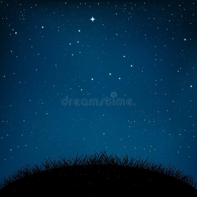 Gras en de grond van de nacht het sterrige hemel stock illustratie