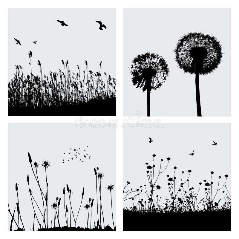 Gras en paardebloem vector illustratie