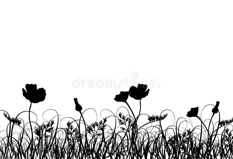 Gras en papaver, vector vector illustratie
