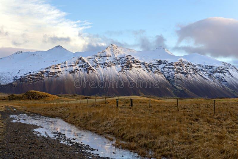 Gras en sneeuwbergen met blauwe hemel in Hofn, IJsland De winter royalty-vrije stock foto