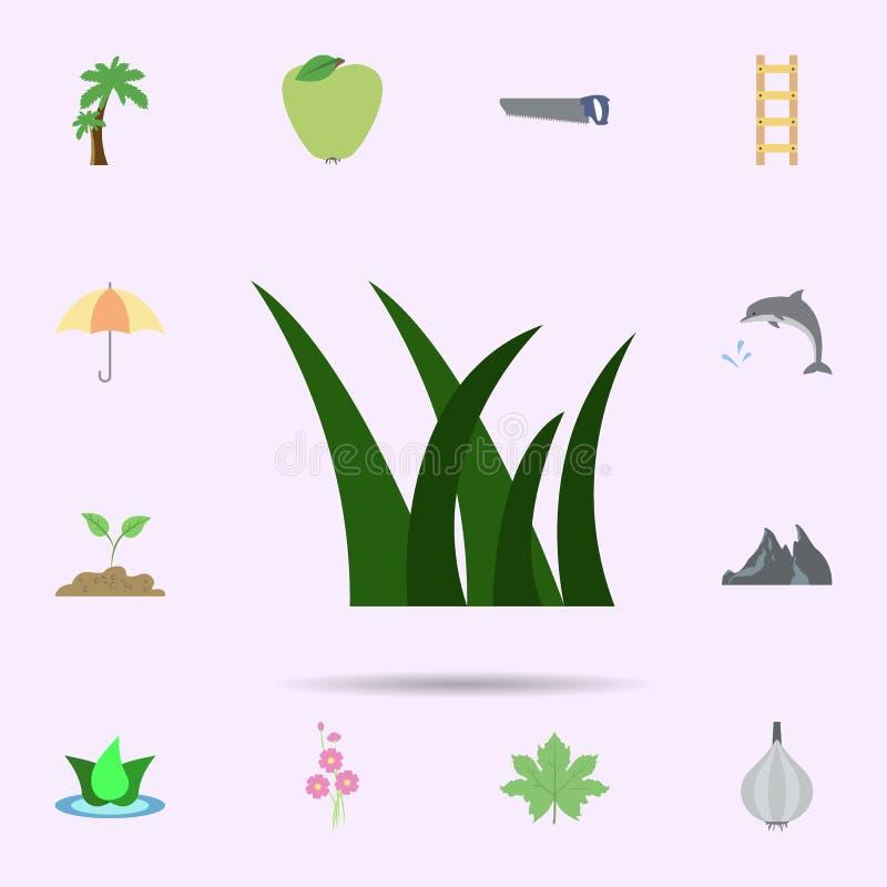 Gras farbige Ikone Universalsatz der Natur f?r Websiteentwurf und Entwicklung, Appentwicklung lizenzfreie abbildung