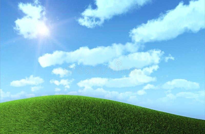 Gras-Feld lizenzfreie abbildung