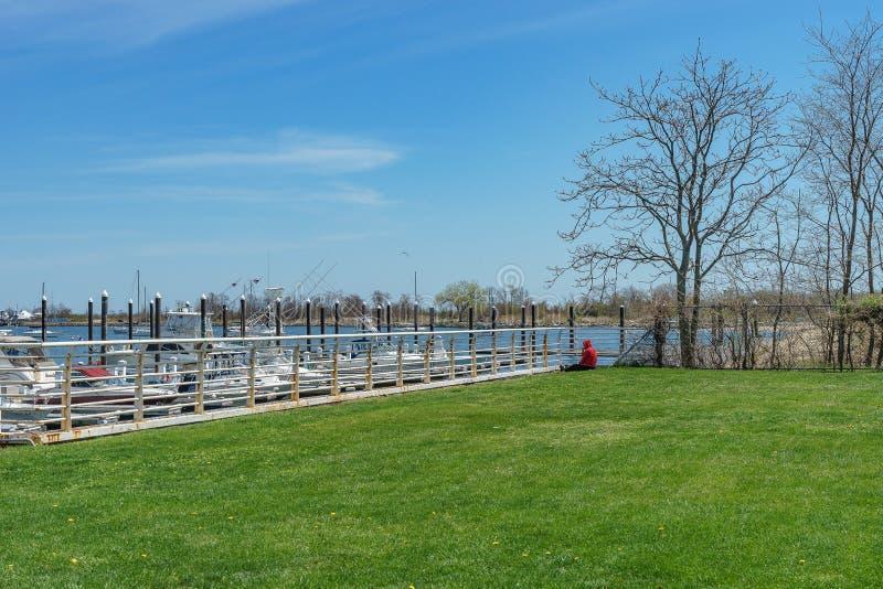 Gras, Jachthafen, Zaun und Boote auf Staten Island lizenzfreie stockfotos