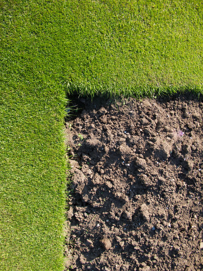 Gras mit drak Braunboden. lizenzfreies stockbild
