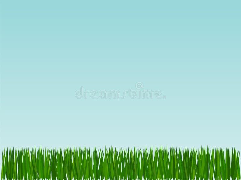 Gras op hemelachtergrond vector illustratie