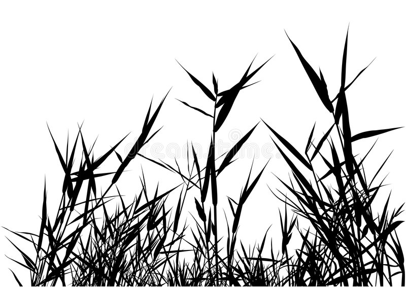 Gras-Schattenbild stock abbildung