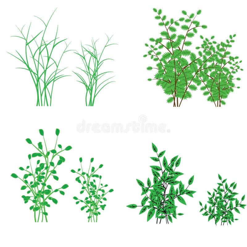 Gras, struiken royalty-vrije illustratie