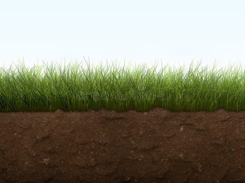Gras und Boden stockbild