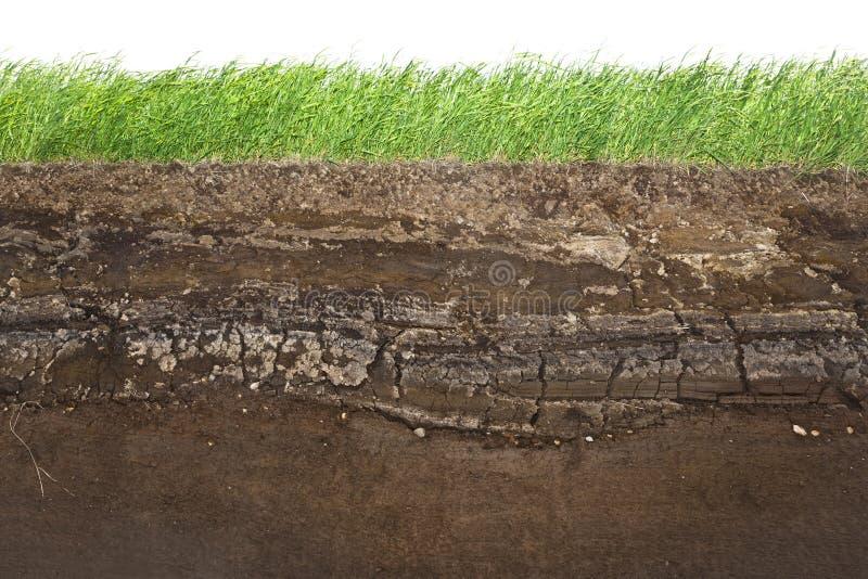 Gras- und Bodenschichten getrennt auf Weiß stockfoto