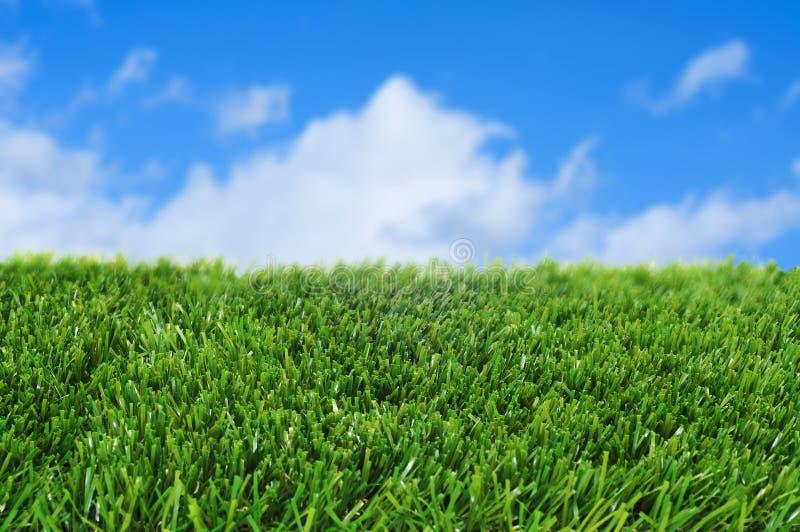 Gras und der Himmel lizenzfreie stockbilder