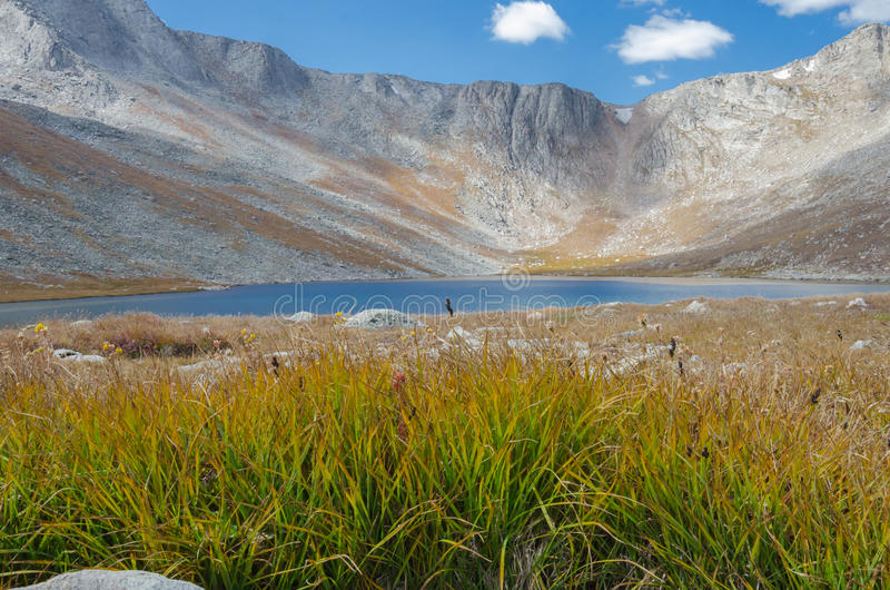 Gras und See auf Berg Evans stockbild