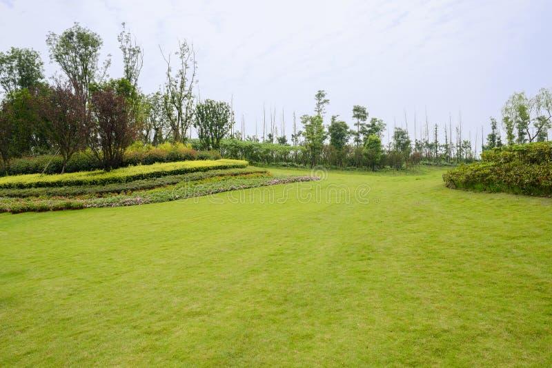 Grasartiger Rasen und Garten auf Abhang im bewölkten Sommer stockbilder