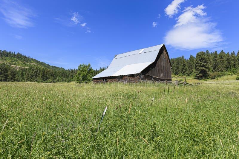 Grasartiges Feld und Scheune nahe Harrison, Idaho lizenzfreie stockfotografie