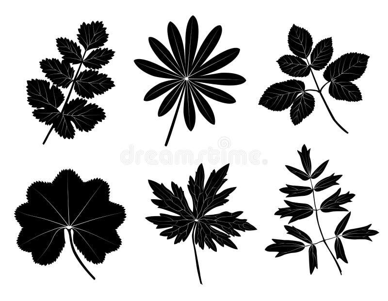Grasblätter Stockbild
