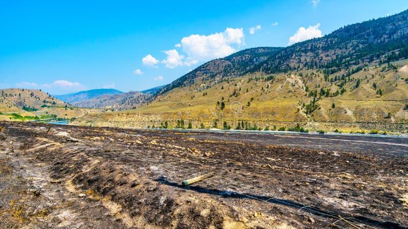 Grasbrand langs Thompson River dichtbij Geheim voorgeheugenkreek in Brits Colombia royalty-vrije stock afbeeldingen