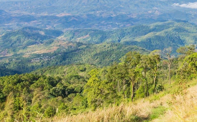 Grasgebied op Berg met Hemel en Wolk bij het Nationale Park Phayao Thailand 4 van Phu Langka royalty-vrije stock foto's