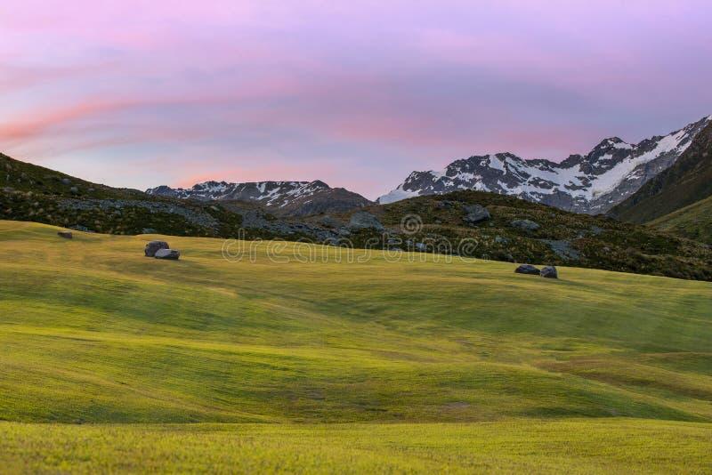 Grasgebied in schemering royalty-vrije stock afbeelding
