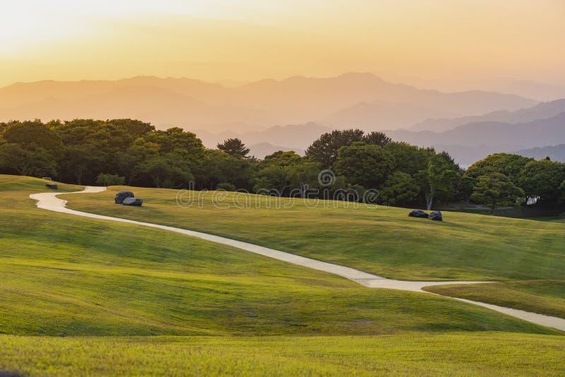 Grasgebied in schemering royalty-vrije stock fotografie