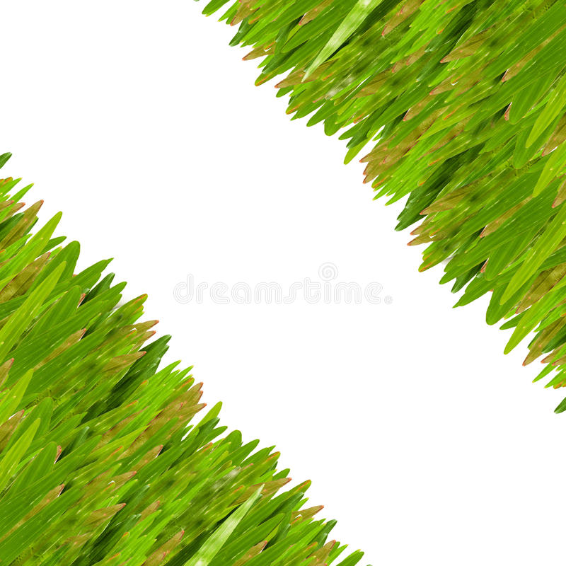 Graskreuzspulmaschinengrenze lizenzfreie stockbilder