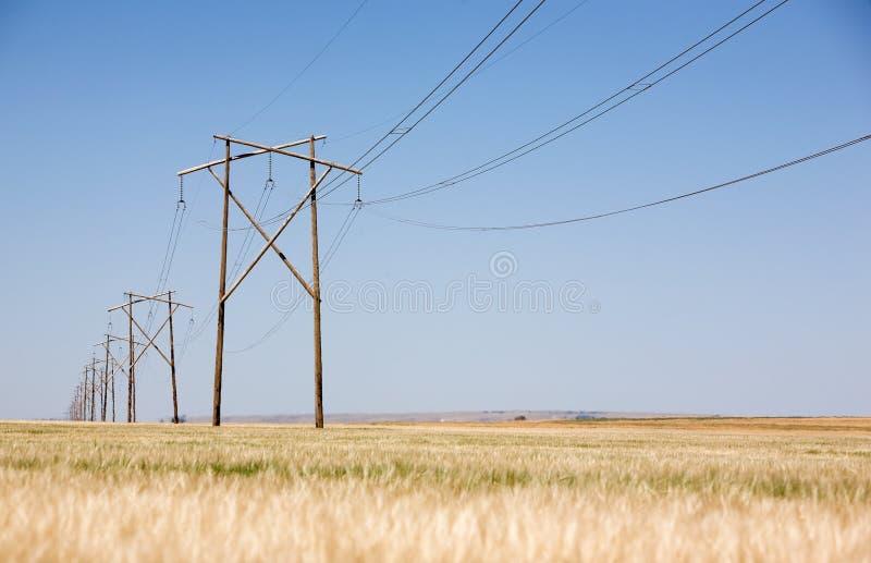Grasland-Stromleitung stockbild