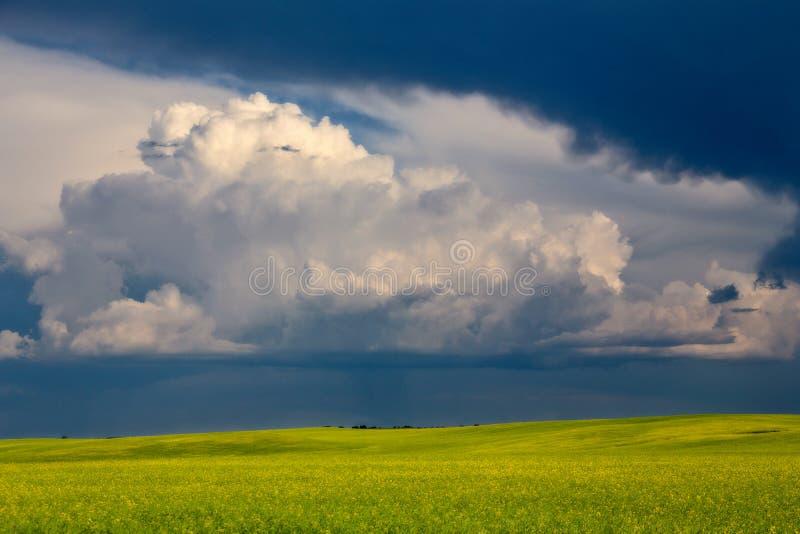 Grasland-Sturm-Wolken lizenzfreie stockfotos