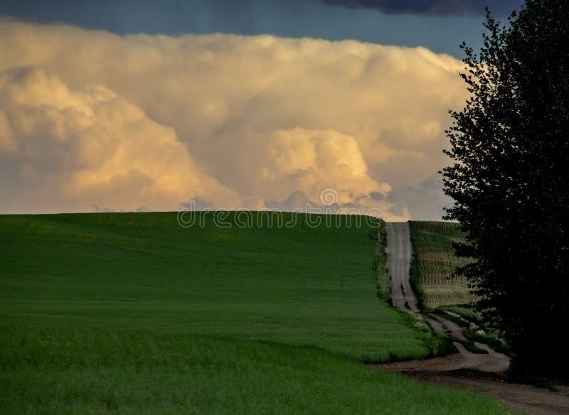 Grasland-Sturm-Wolken lizenzfreie stockbilder